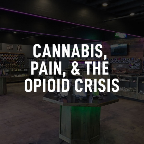 cannabis-pain-and-opioids