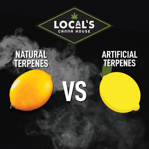artificial-vs-natural-terpenes-min