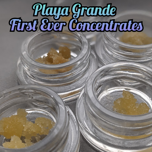 Playa Grande Concentrates