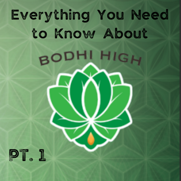 Everything You Need To Know About Bodhi High In Spokane Valley