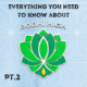 everything-you-need-to-know-abou-min